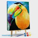 Toucan Tropical bird