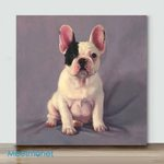 Mini – Baby Manny(Already Framed Canvas)