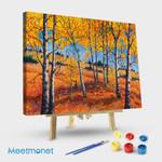 Meadow In Autumn Rainforest