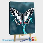 Charming Butterfly 16