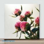 Mini – Flower bone 2(Already Framed Canvas)