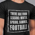 There are four seasons winter spring summer football for football lover t shirt hoodie sweater sweater