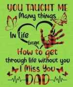 You taught me many things in life except how to get through life without you miss you dad shirt
