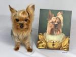 the golden girl Custom Pet