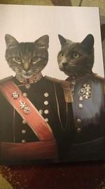 the war heroes Custom Pet