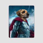 The Noble Thor Thunder God Custom Pet