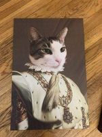 The Emperor renaissance costume potrait Custom Pet
