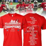 Tampa bay buccaneers national football conference champions for fans