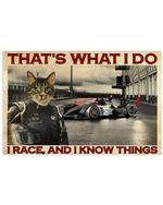 Cat Racing That's What I Do And Know Things Poster Vintage Retro Art Picture Home Wall Decor Horizontal No Frame Full Size