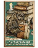 Owl And Book That's Not Grey Hair That's Wisdom Highlights Spread Inspiration Poster - Gift For Home Decor Wall Art Print Vertical Poster No Frame Full Size