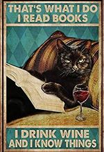 That's What I Do Drink Wine Read Books Know Things Black Vintage Retro Home Wall Art  Decor No Frame Poster