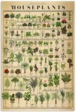SANDNAT STORE The Horticultural Chart of Houseplants Gardening Funny Plant Vertical Poster No Frame Full Size