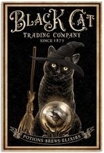 Black Cat Trading Company Potions Brews Elixirs Witchcraft Halloween Poster No Frame House Decor Wall Art Gifts For Women Men Cat Lovers
