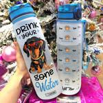 Dachshund DYGW HHW1206012 Water Tracker Bottle