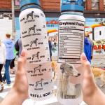 Greyhound Facts HTQ1107012 Water Tracker Bottle