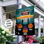 Personalized Pumpkin Patch THZ2309022 Flag