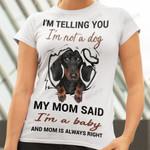 Dachshund MDR3009011 Classic T Shirt