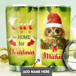 Owl Christmas Personalized DNS0311009 Stainless Steel Tumbler