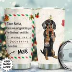 Christmas Letter Dachshund Personalized THS0611015 Stainless Steel Tumbler