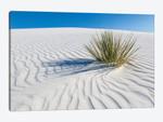 White Sands Scenery