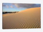 Sand Dune, Monahans Sandhills State Park, Texas