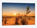 White Sands Sunset Impression
