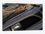 1978 Pontiac Trans Am, Front End Detail