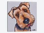 Levi The Airedale Terrier