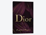 Dior A World Of Elegance