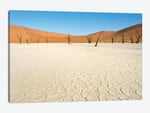 Desert Landscape III, Deadvlei, Namib Desert, Namib-Naukluft National Park, Namibia