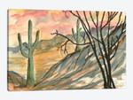 Arizona Evening, Southwest