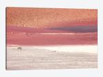 Red Sands Of California Desert II