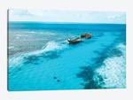 Tropical Island Shipwreck & Eagle Rays
