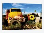 Yellow Daisy With Truck