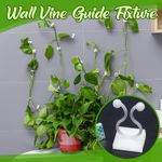 Wall Vine Guide Fixture