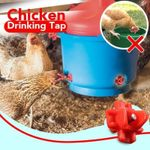 Chicken Drinking Tap