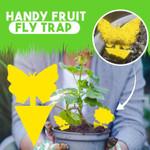 Handy Fruit Fly Trap