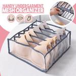 Handy Undergarment Mesh Organizer