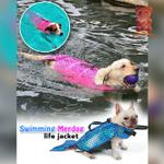 Swimming MerDog Life Jacket