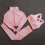 Seamless Yoga Sets Female Sport Gym Suits