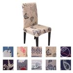 Modern Chair Cover Spandex Dining Chaircover