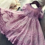 Mesh Casual Lace Embroidery Princess Baby Girl Clothes
