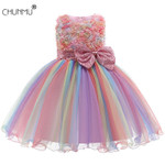 Baby Embroidered Formal Princess Dress Clothes