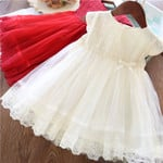Lace Girl Party Dress Children Clothing Princess Kids