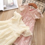 Lace Princess Dress  Kids Dresses for Girls Embroidery Flower