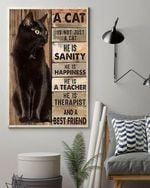 A cat is not just a cat he is sanity happiness a teacher and a best friend for cat lover poster