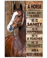 A horse he is sanity happiness best friend poster canvas