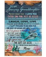 To My Granddaughter Life Gave Me The Gift Of You Turtle Poster