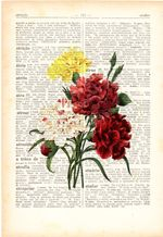Flowers Art Print Wall Art Vintage Carnations Plant Beautiful Dictionary Decor Home Furnishing Gift