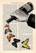Butterflies And Wine Bottle Art Print Drink Lover Decor Home Gift